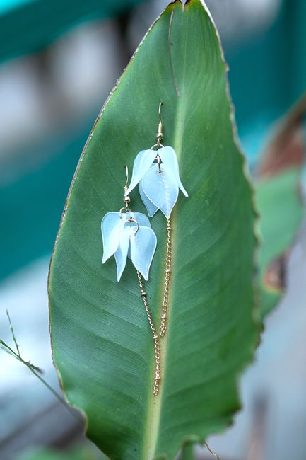 Picture of Be kind earrings